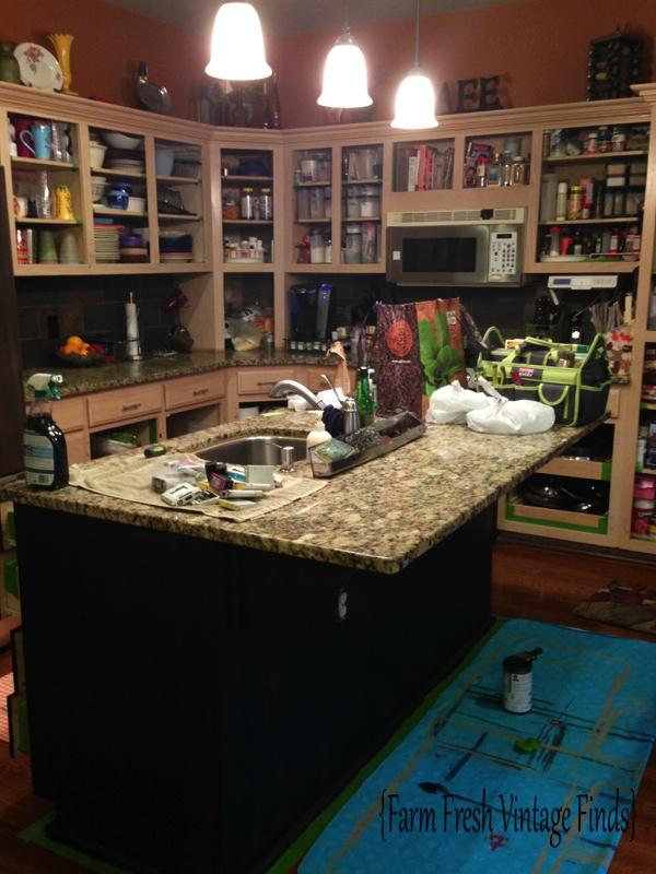 Taya Kitchen 7
